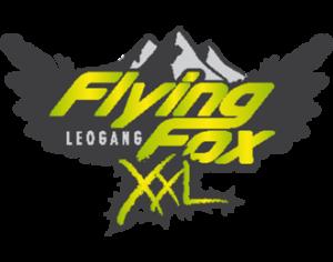 Flying Fox Leogang